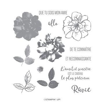 STEMPELSET KLARSICHT ROSE SAUVAGE (FRANZÖSISCH)