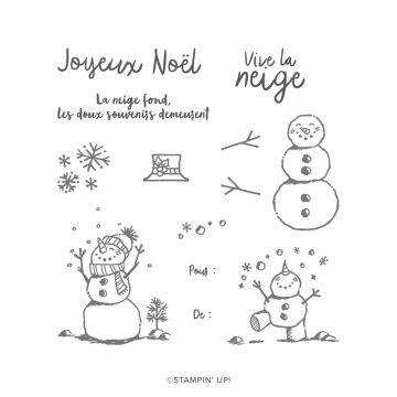 LA NEIGE PREND VIE PHOTOPOLYMER STAMP SET (FRENCH)