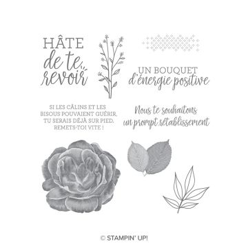 DOUX RÉCONFORT CLING STAMP SET (FRENCH)