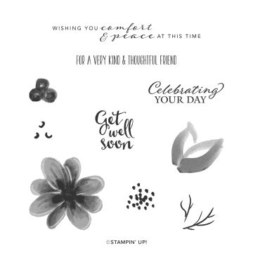 GORGEOUS POSIES CLING STAMP SET (ENGLISH)