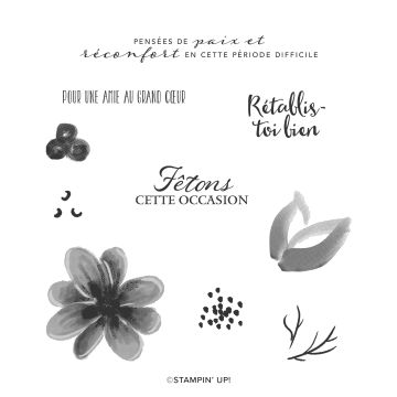 BOUQUET MAGNIFIQUE CLING STAMP SET (FRENCH)