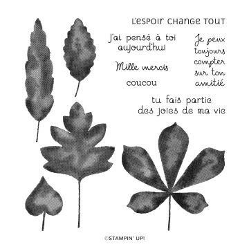 BOUQUETS DE FEUILLES PHOTOPOLYMER STAMP SET (FRENCH)