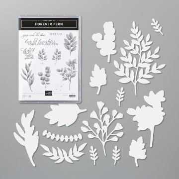 FOREVER FERN BUNDLE (ENGLISH)