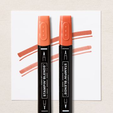DUO DE MARQUEURS STAMPIN' BLENDS OCRE ROUSSILLON