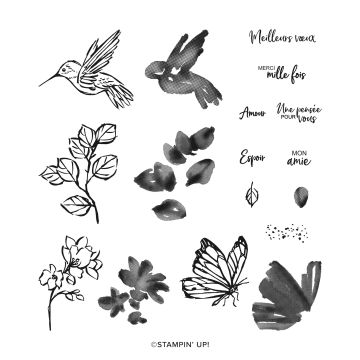 UNE TOUCHE D'ENCRE PHOTOPOLYMER STAMP SET (FRENCH)