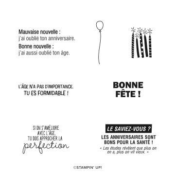 SET DE TAMPONS AMOVIBLES LA PERFECTION OU PRESQUE (FRANÇAIS)