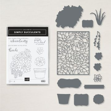 SIMPLY SUCCULENTS BUNDLE