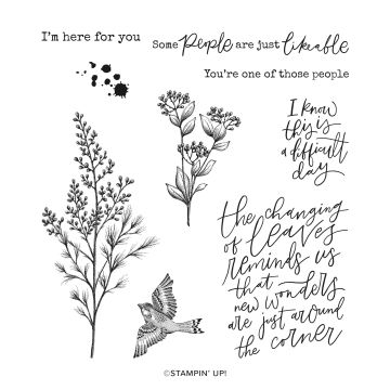 BEAUTY OF TOMORROW CLING STAMP SET (ENGLISH)
