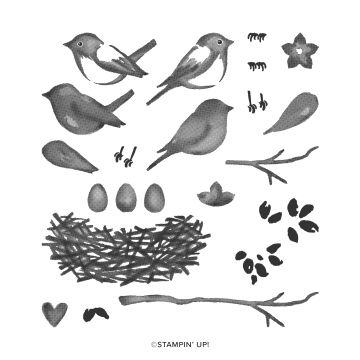 BIRDS & BRANCHES PHOTOPOLYMER STAMP SET