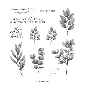 ÉMOTIONS EFFEUILLÉES CLING STAMP SET (FRENCH)