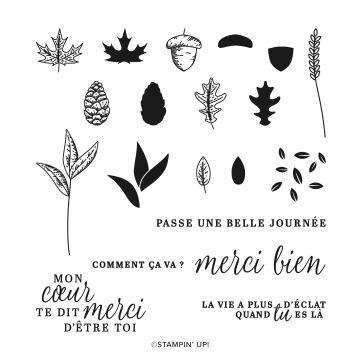 SET DE TAMPONS EN RÉSINE BEAUTÉ AUTOMNALE (FRANÇAIS)