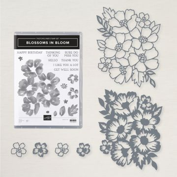 BLOSSOMS IN BLOOM BUNDLE