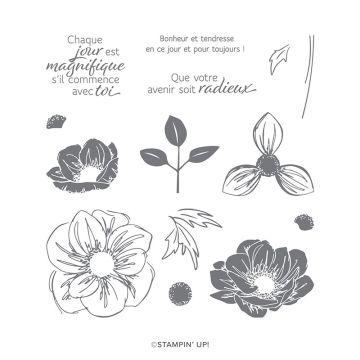 STEMPELSET KLARSICHT ESSENCE FLORALE (FRANZÖSISCH)