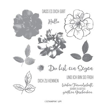 STEMPELSET KLARSICHT WILDE ROSE (DEUTSCH)