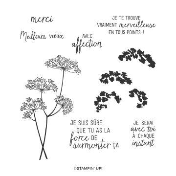STEMPELSET KLARSICHT DENTELLE DE LA REINE ANNE (FRANZÖSISCH)