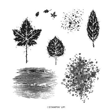 GORGEOUS LEAVES CLING STAMP SET