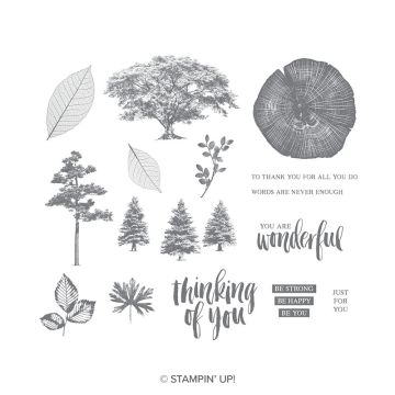 ROOTED IN NATURE CLING STAMP SET (ENGLISH)