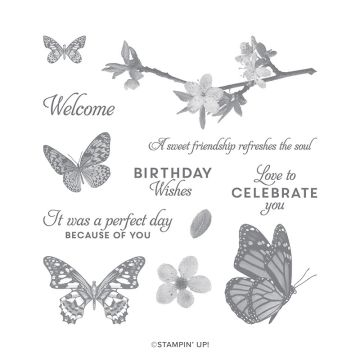 BUTTERFLY WISHES CLING STAMP SET (ENGLISH)