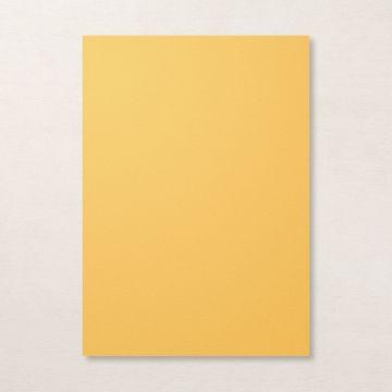 cardstock-a4-bumblebee