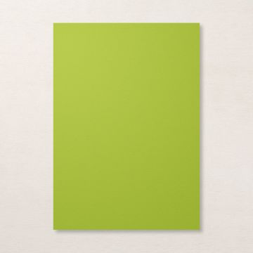 GRANNY APPLE GREEN A4 CARDSTOCK