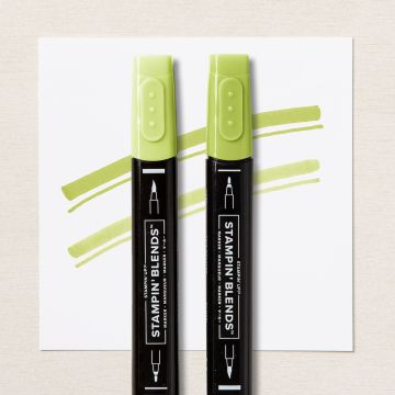 STAMPIN' BLENDS GRANNY APPLE GREEN COMBO PACK