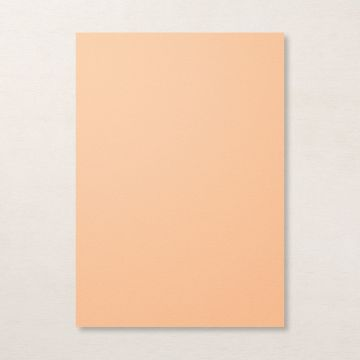 PALE PAPAYA A4 CARDSTOCK