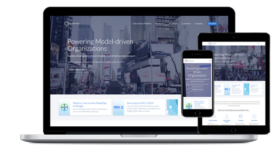 Screenshot of Domino Data Lab website.