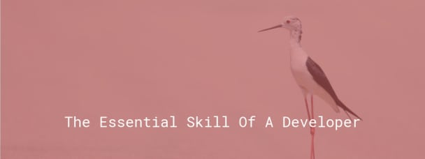 The essential skill of a developer