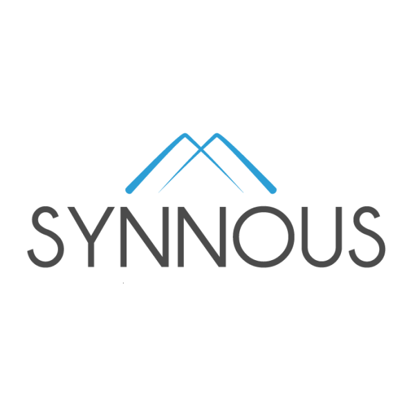 Logo Synnous Consulting GmbH