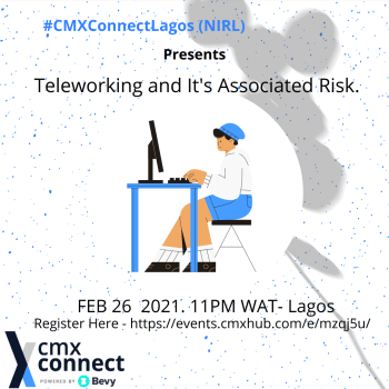 Teleworking and Associated Risk