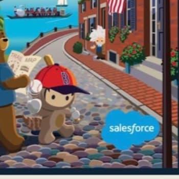 Salesforce Nonprofit User Group, Boston, United States