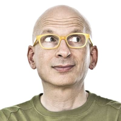 Seth Godin (Seth Godin)