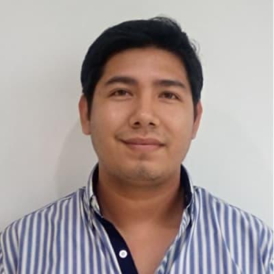 David Morfin Diaz (Bhuvi IT Solutions)