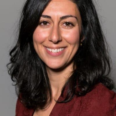 Ziba Zareie (Swedish Insititute)