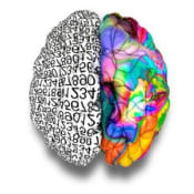 Left and Right Brain Satisfaction