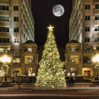 Startup Grind DC Holiday Party 2016 (Reston Town Center)