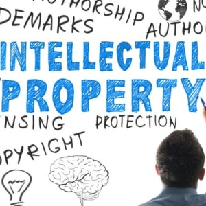 Intellectual Property! Horror Stories, Mistakes, and Successes. Navigating the IP Jungle.