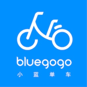 Yufei Hu, VP of Operation (Bluegogo)