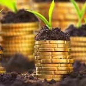 Agropreneurship,Innovation and limitless Wealth opportunities for young Nigerians