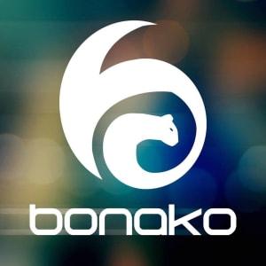 Olugbenga & Ivandro (Bonako)