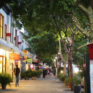 From Real Estate Leaders to Business Owners: What Berkeley Has to Offer