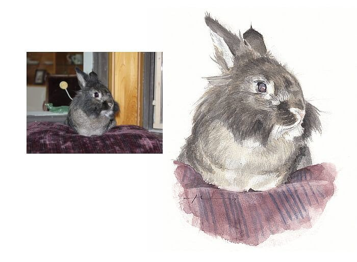 Watercolor pet portrait from a photo of a bunny by portrait artist Mike Theuer. Photo reference included.