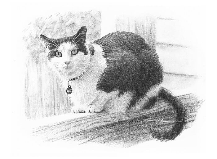 Pencil pet portrait from a photo of a cat on a railing by portrait artist Mike Theuer.
