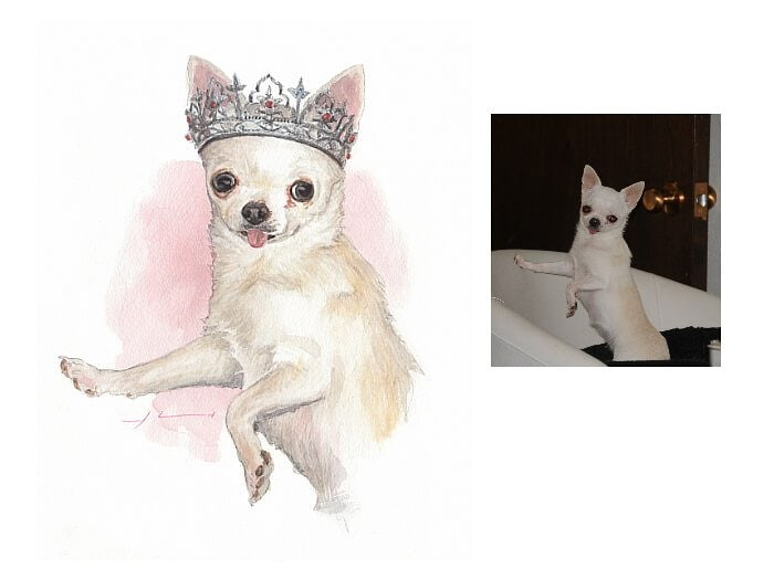 Watercolor pet portrait from a photo of a chihuahua in a tierra by portrait artist Mike Theuer. Photo reference included.