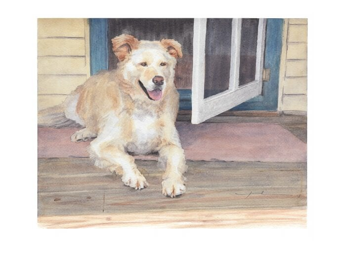 Watercolor pet portrait from a photo of a dog laying by a screen door by portrait artist Mike Theuer.