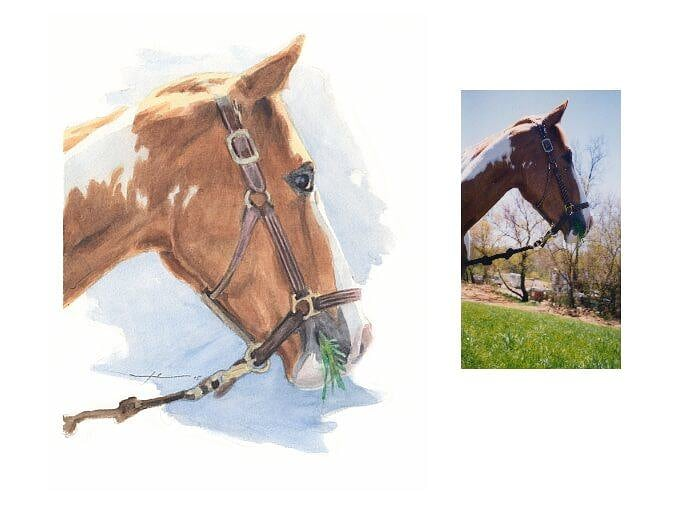 Watercolor pet portrait from a photo of a horse by portrait artist Mike Theuer. Photo reference included.