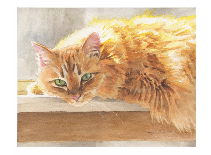Watercolor pet portrait from a photo of an orange maine coone cat by portrait artist Mike Theuer. Photo reference included.