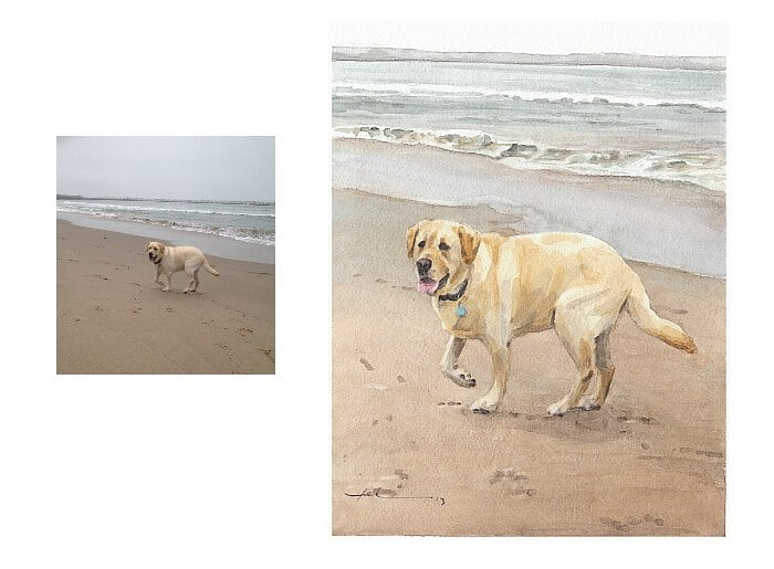 Watercolor pet portrait from a photo of a yellow lab on the beach by portrait artist Mike Theuer. Photo reference included.