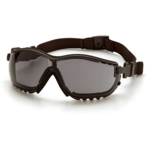 V2G Goggles