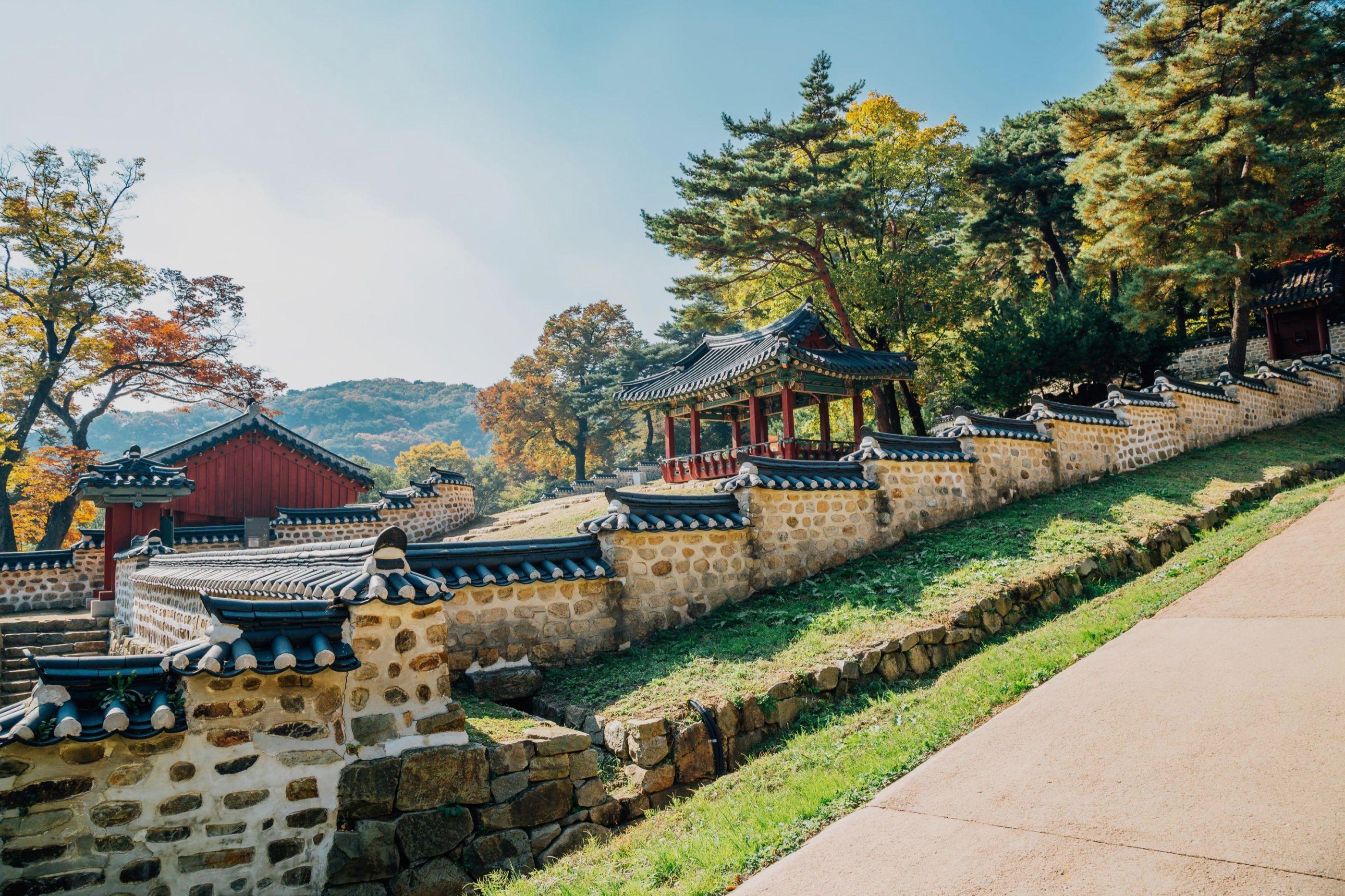 Whores Gwangju